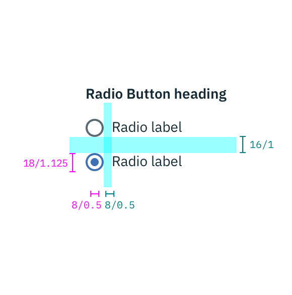 Structure and spacing measurements for a radio button